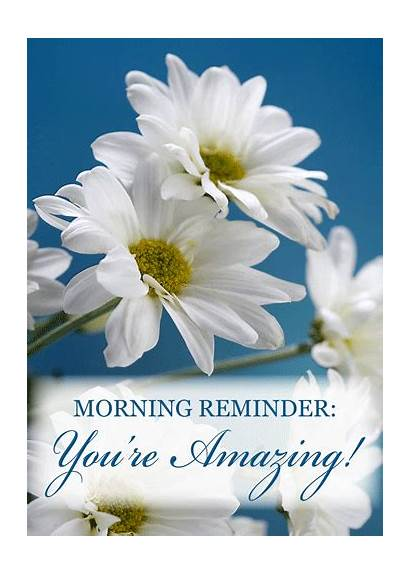 Morning Amazing Reminder Re Youre Person Daisy