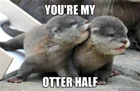 Otter Love Meme - trending sea otter meme