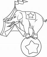 Circus Coloring Elephant Pages sketch template
