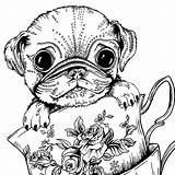 Pug Coloring Pages Dog Cute Baby Adults Printable Print Colouring Puppy Dogs Sheets Adult Teacup Boys Bestcoloringpagesforkids Getdrawings Puppies Drawing sketch template