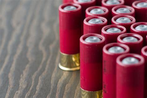 Home Defense Shotgun Ammo
