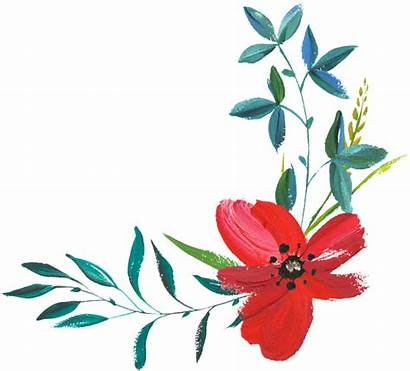 Hand Painted Watercolor Pixabay Flower Illustrations Thanks