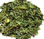 14696 Herbs Of Mexico Coupon by Yellowelder 16 Oz Yellowelder Tronadora Wildcrafted