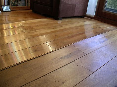 Water Damaged Hardwood Floors: Should you Worry about Mold
