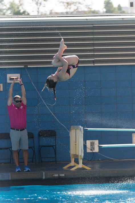 ucla womens diving dominates  victory  usc invitational daily bruin