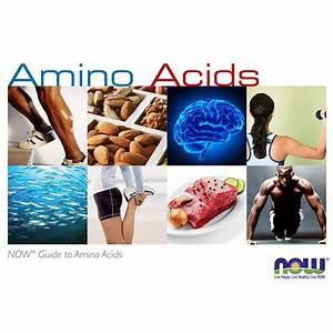 Guide To Amino Acids