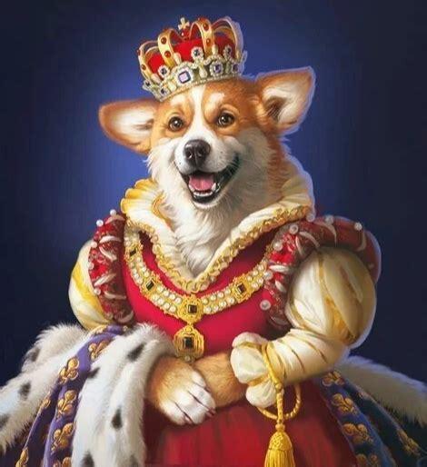 Jauno gadu sagaidot! | Собачьи портреты, Портреты домашних ...
