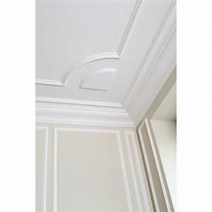 Corniche Plafond Platre : grande corniche de plafond en pl tre ~ Voncanada.com Idées de Décoration