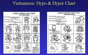 hypoglycemia diet causes symptoms - www.projectiones.netau.net  Hypoglycemia Food, Nutrition and Metabolism