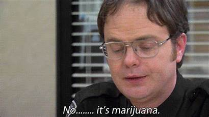 Dwight Schrute Office Rainn Wilson Michael Marijuana