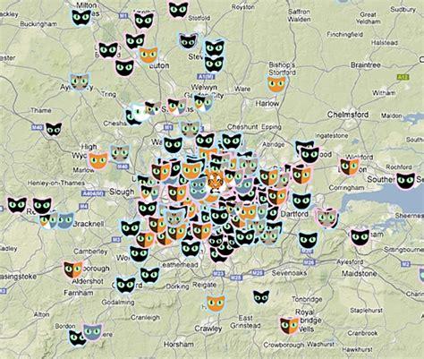 Interactive Cat Map