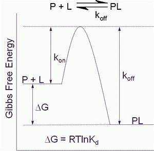 Thermodynamics And Kinetics Driving Quality In Drug