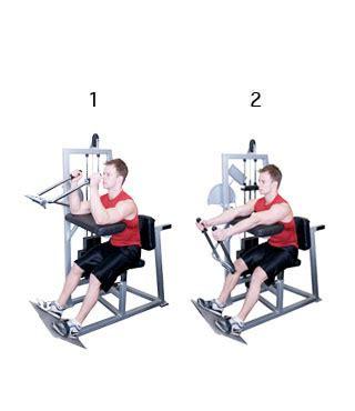 Biceps en Triceps Thuis trainen - sportflock