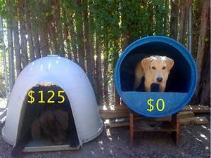 raising toot and roxy dog house idea for cheap With cheap dog house ideas