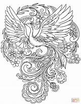 Peacock Coloring Flowers Drawing Printable Peacocks Birds Bird Mindful Sheets Outline Mandala Supercoloring Paper sketch template