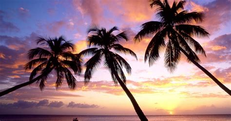 sun set  sun rise wallpapers   awesome