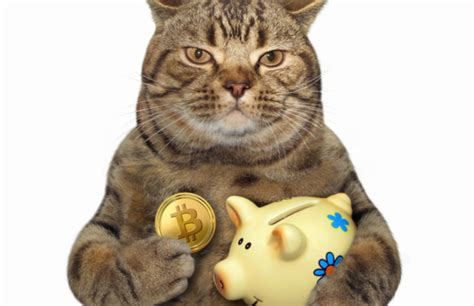 Dollars, euros, and other real or virtual currencies. IRS Says Fewer Than 100 People Have Reported Bitcoin ...