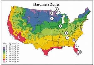 What Is Plant Hardiness
