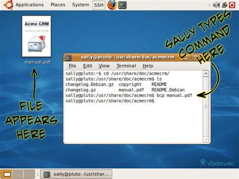 debian user manual pdf tigerfreeload