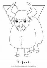 Yak Coloring Letter Colouring Activityvillage Trace Upper Abc sketch template