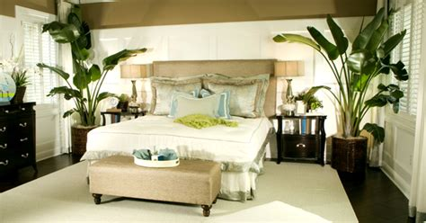 Top 6 Plants For Bedrooms To Help You Sleep Better