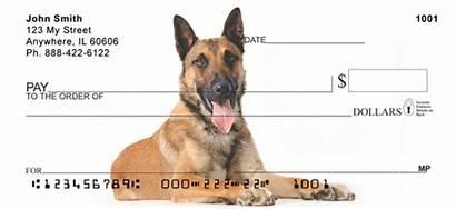 Malinois Belgian Checks Shepherd Dog Personal Puppies