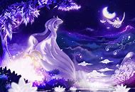 Night Sky Wallpaper Anime Girl