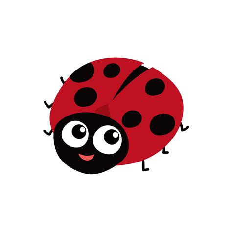 insect ladybird red black ladybug png