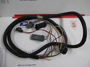 Buy Western Fisher Snow Plow 4 Port Headlight Wiring