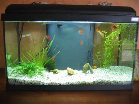 d 233 coration aquarium 60 litres