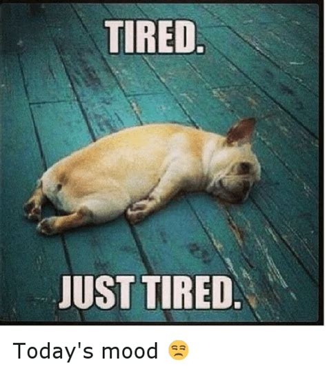 Meme Tired - tired meme www pixshark com images galleries with a bite