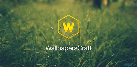 Wallpaperscraft 240  Free Personalization App For