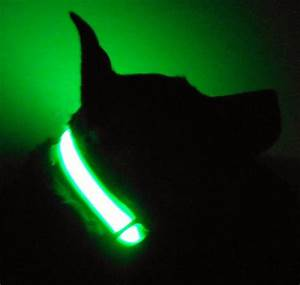 Blinking Light For Dog Collar Led Dog Collar Glows Lights Up In Dark Lighted Pet Safety