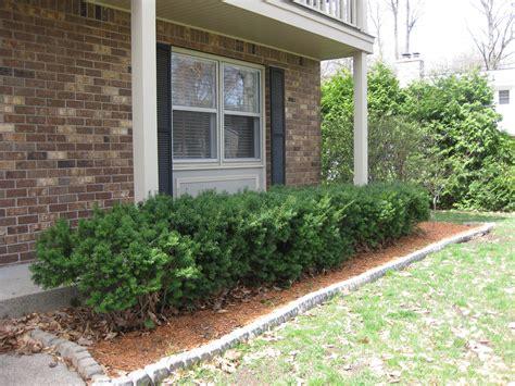 landscaping front porch landscape plan front porch
