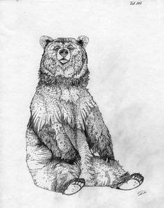 50 Best Bear Sketches images in 2018   Animal drawings, Bear sketch, Bear art