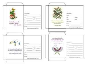 seed packet templates  package  give