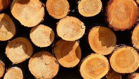 Second Baustoffe by Bild 2 Nat 252 Rliches Baumaterial Holz