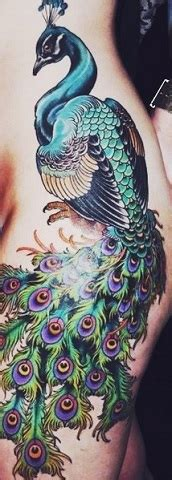 peacock feather tattoos tattoo insider