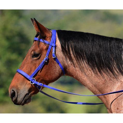 bridle bitless biothane beta colored solid horse bridles horses english tack alternative views riding discipline twohorsetack