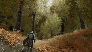 Image, Result, For, Skyrim, Forest, With, Images