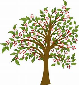 Summer Tree With Fruits  Vector
