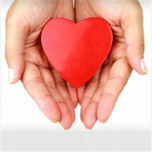 National Domestic Violence Hotline | Family and Youth ...  Heart