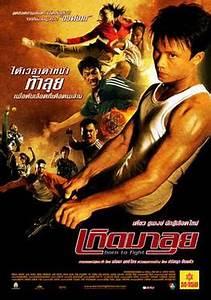 Born to Fight (2004 film) - Wikipedia