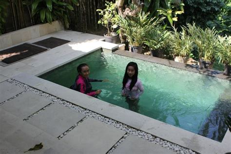 mini pool picture of leha leha villa sanur tripadvisor