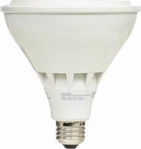 Sylvania 250 watt par38 daylight dimmable led indoor flood for Outdoor led flood light bulbs 250 watt equivalent