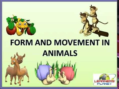 CBSE class 6 Science Form and Movement in Animals session