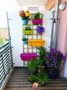 Kleiner balkon mit verschiedenen pflanzen und krautern in for Französischer balkon mit kleiner beistelltisch garten