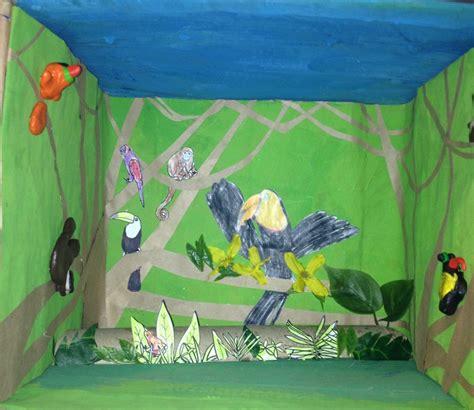 st grade rainforest diorama canopy layer toucan habitat