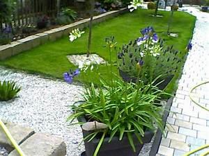 Wie Gestalte Ich Meinen Garten Richtig : farbenfrohe gartenblumen gu ~ Markanthonyermac.com Haus und Dekorationen