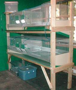 Rabbit Cage Designs Indoor - WoodWorking Projects & Plans